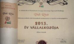2013 Év Vállalkozója, Vidi Rita